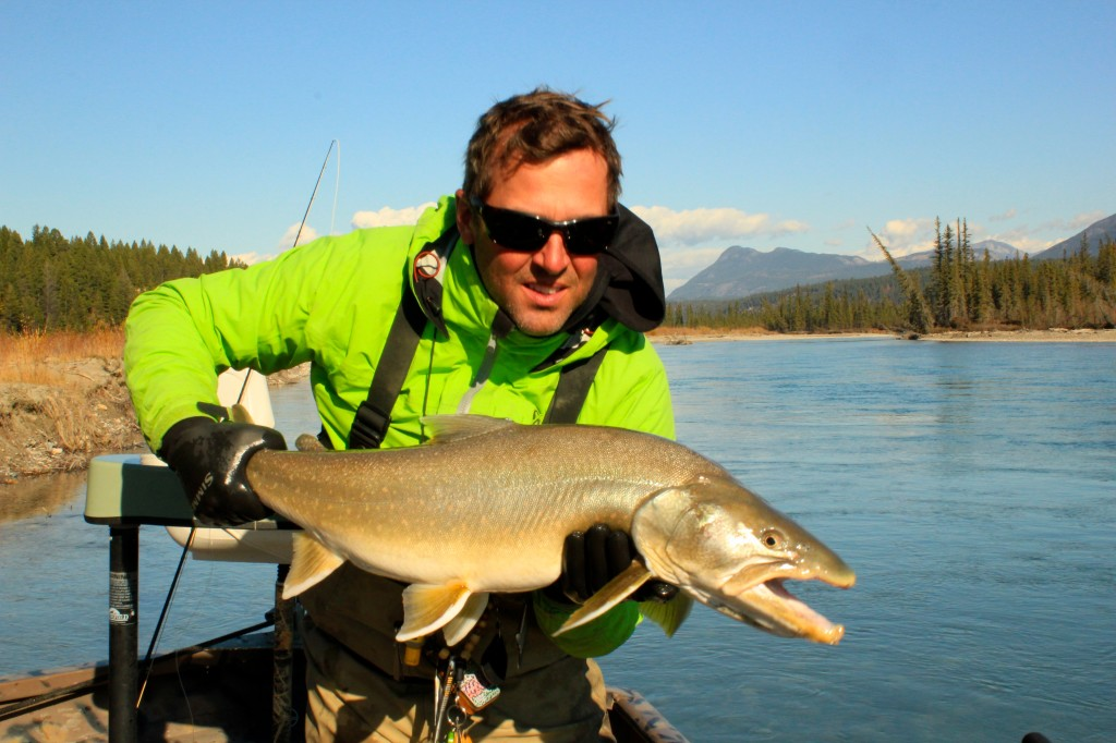 Post Spawn Kootenay Bull Trout